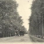 KB_ODB_Verkeer_En_Vervoer_Paardentram_In_Bilt_1901