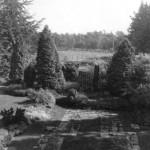 Zonneheuvel tuin